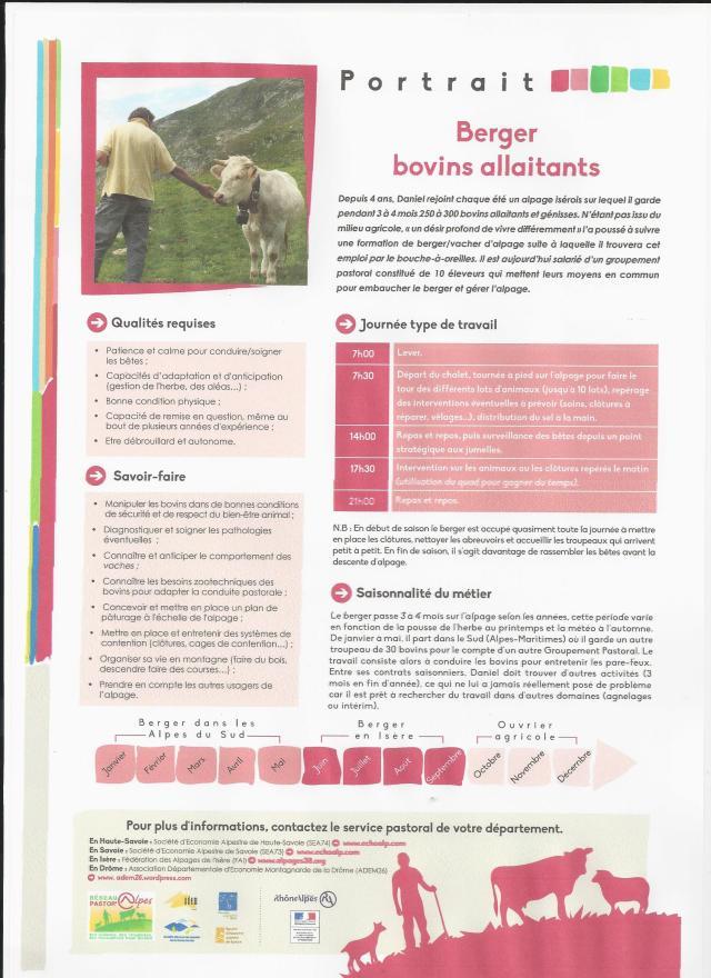 Portrait bovins allaitants